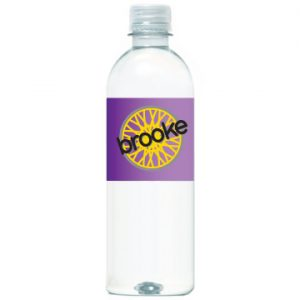 16.9 oz Bottled Water