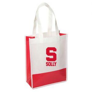Andover Way Small Laminated Bag
